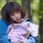 Lỗ Chiếu Hoa nữ thanh niên tàn bạo mưu hại Hồ Tiên đoạt Linh Châu